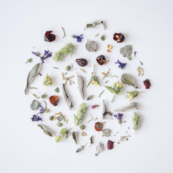 Rhoeco Forest Organic Ingredientes