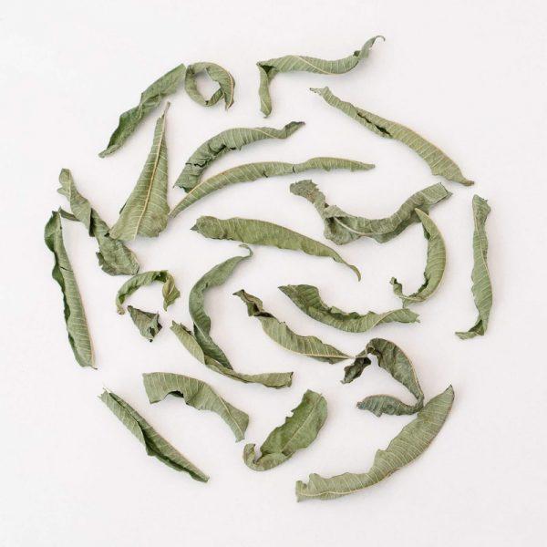 Rhoeco Lemon Verbena Organic Ingrediente