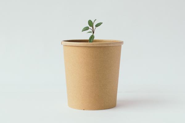 Grow Rho Eco